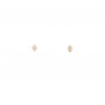 Citigems 999 Pure Gold Golden Sea Shell Earrings